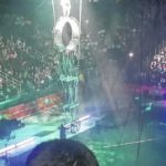 Bridges Academy visits Ringling Brothers and Barnum and Bailey Circus