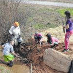 Elkin Elementary students aid in Watershed NOW restoration project