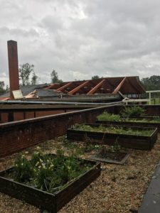 UPDATED: Courtney Elementary gym severely damaged by tornado